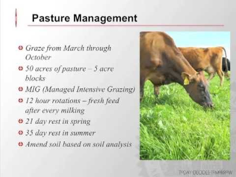 Amending Soils in the Organic Dairy Pasture Webinar by eOrga