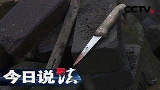 《今日说法》20150628 最不可能的凶手:偏僻山村 独居女人遭人残忍杀害 | CCTV今日说法官方频道