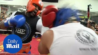 Still got it! Mayweather trains in fierce sparring session - Daily Mail
