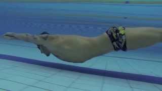 видео: Никита Коновалов: Упражнения для развития дельфинообразных движении в воде.