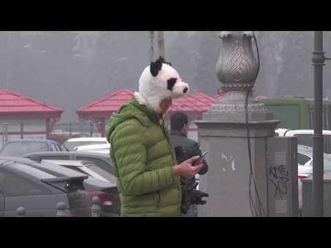 ObjectivTv: Через щільний туман у Харкові скасовують авіарейси