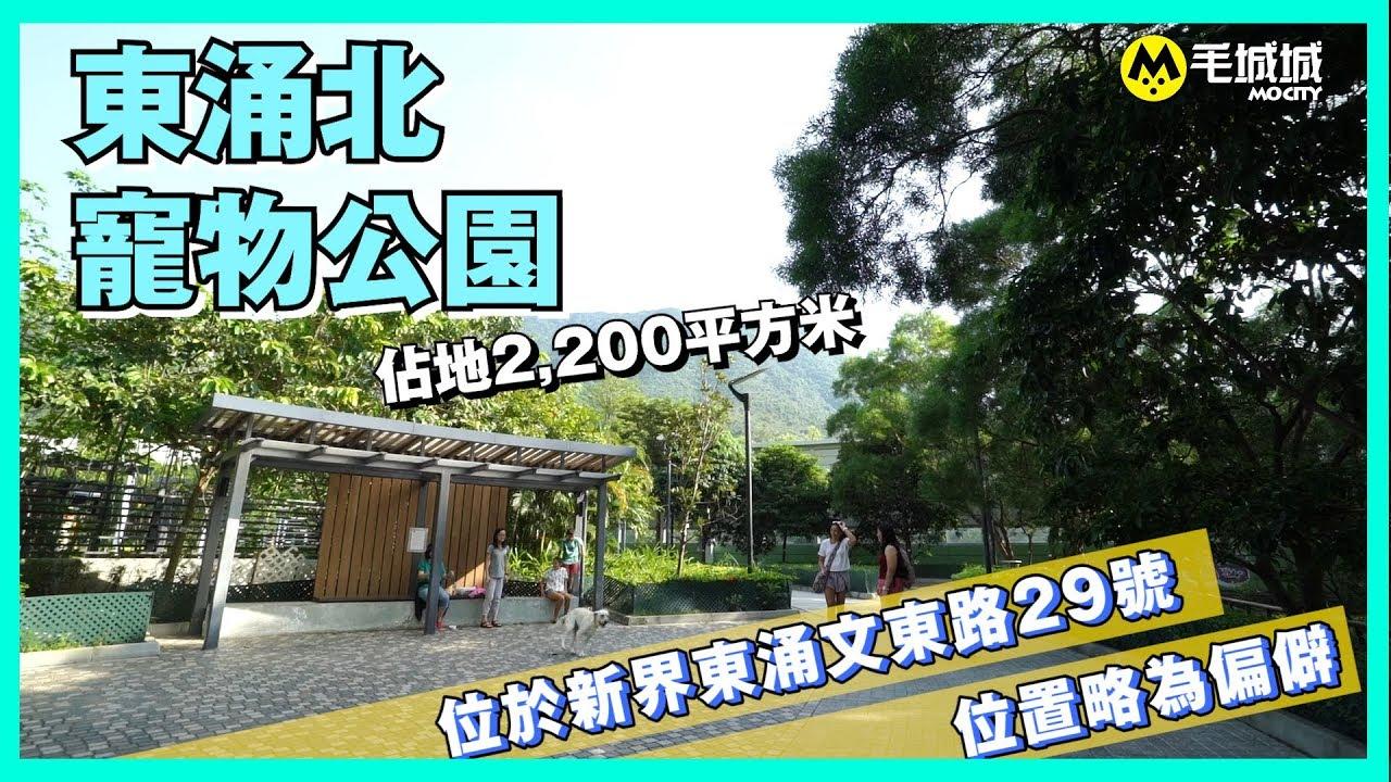 【十八區狗公園】東涌北公園 - YouTube