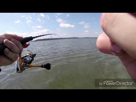 Rainbow Beach Flathead Fishing