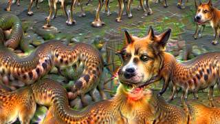 Deep Dream: Shroom Zoom
