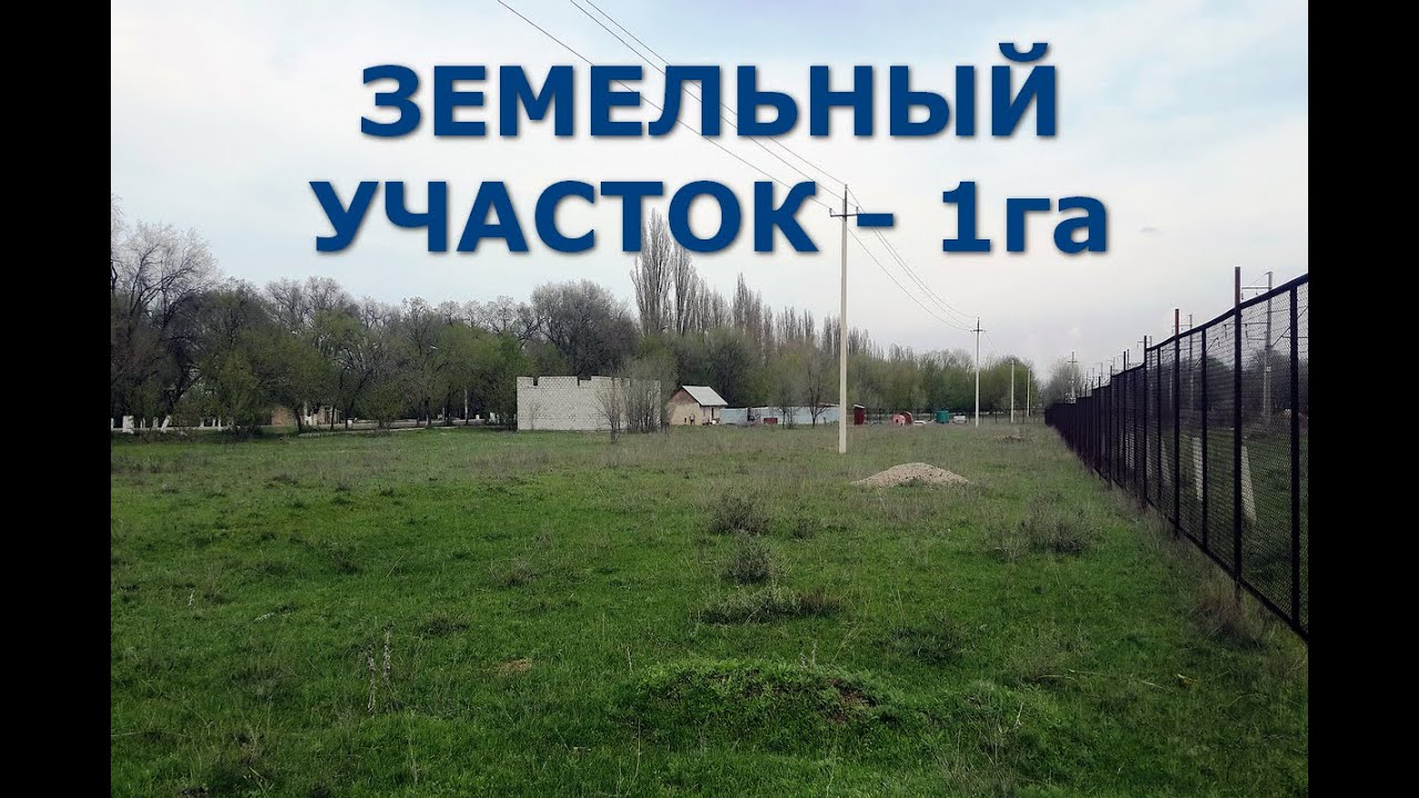 СМИ   Kaspi Red. Покупки в рассрочку в Алматы с Зауре Розмат - YouTube