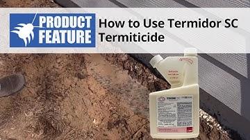 How to Do a Termite Treatment with Termidor SC Termiticide