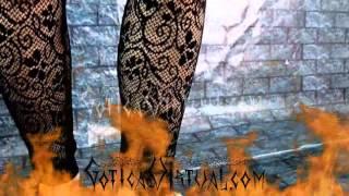 Sensuales medias estilo leggins Gran Mayorita