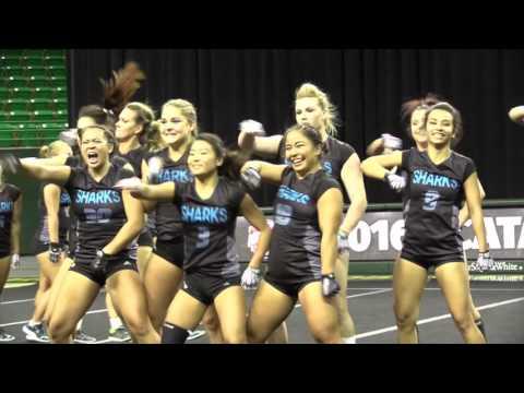 Hawaii Pacific - NCATA Quarterfinal Post-Meet Recap - Apr. 17, 2016