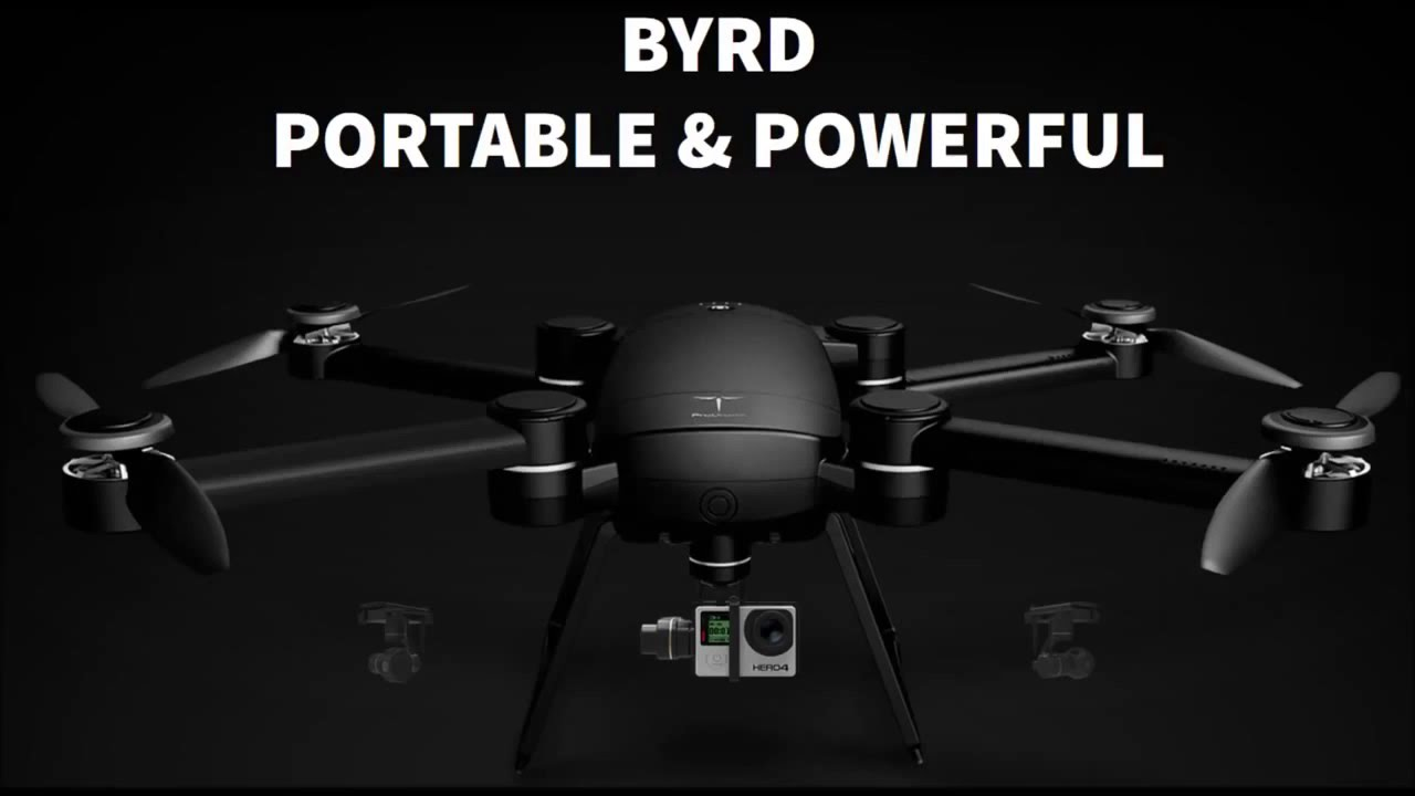 ProDrone Bird Portable Powerful