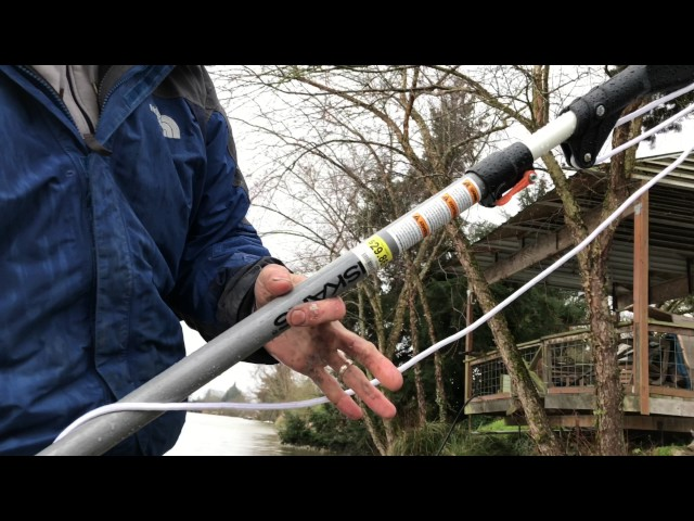 Finding free fishing lures in trees and bushes using a fiskars limb cutting tool