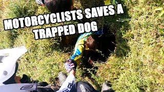 Motocykliści ratują uwięzionego psa ;)