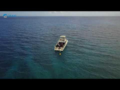 DrOne Cayman Islands 1