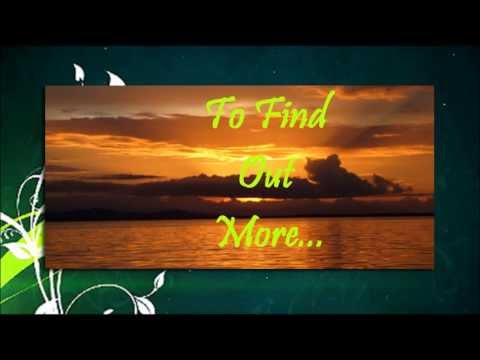 Bocas Del Toro - Vacation Rental Business for Sale