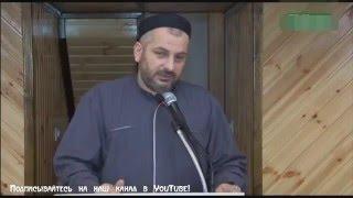 Махди хаджи Абидов   'Имам Шамиль, человек которому ответил сам Пророк ﷺ'