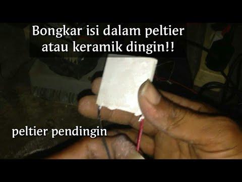 Bongkar Peltier /keramik Dingin