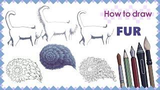 How to draw FUR - Mink