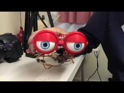 Animatronic RC controlled eye mechanism by FurriFingers puppets!