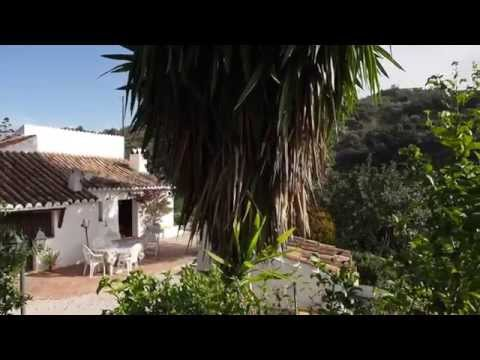 Country House between Riogordo and Comares, Malaga, Andalusia  -  rg1294ch
