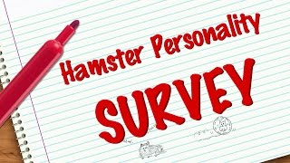 Hamster Personality Survey *CLOSED* Thumbnail
