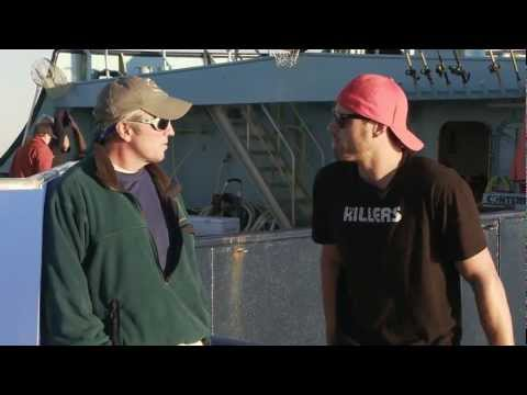 Skomal and Morrow Talk Sharks