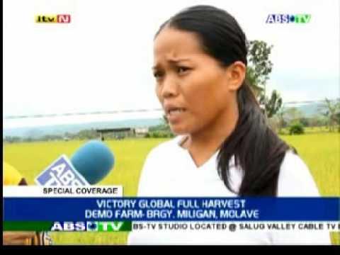 Organic Farming Testimonies - Rice