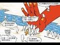 【沃草直播】「兩區人民關係條例」修法登場!中國國民黨為何反對有民意授權才談「政治協議」?