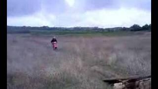 saut scoot