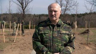 Лукашенко о дебатах Порошенко и Зеленского