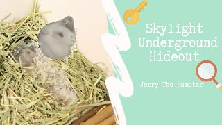 ?Skylight Underground Hideout …