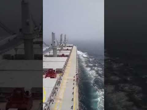 brodska sirena