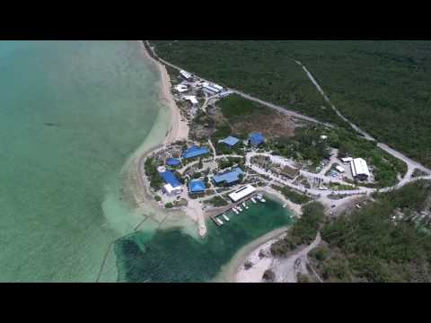 University of Exeter's Bahamas Field Course