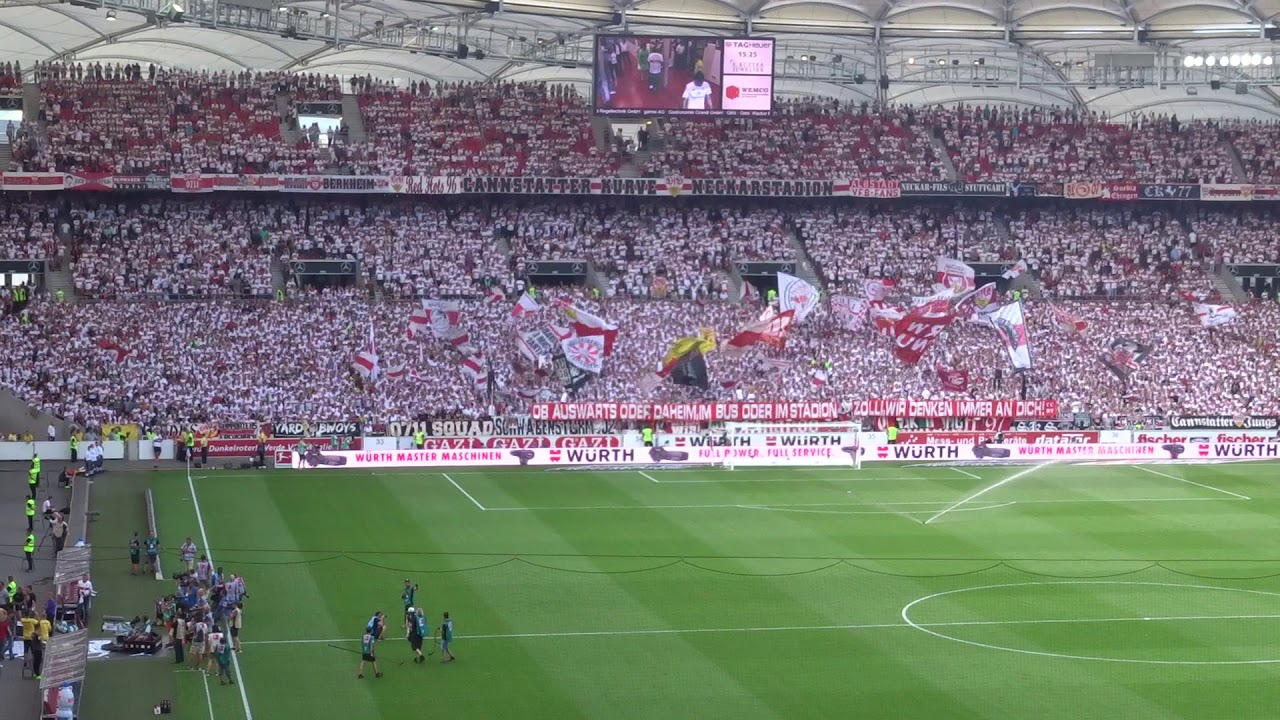 Vfb Mainz