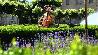 Showcasing Army music Cellist plays Flight of the Bumblebee