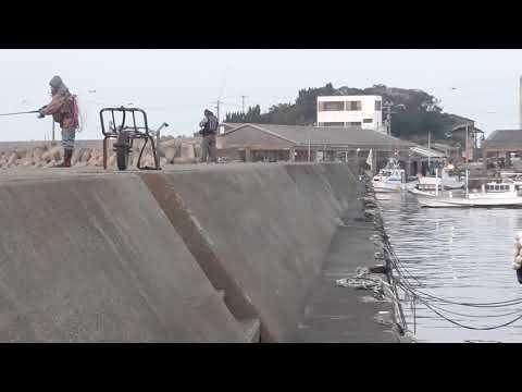 みなべ町堺堤防から青物魚を狙うルアーマン