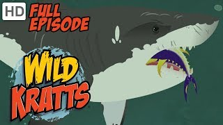 Wild Kratts - Stuck on Sharks 🦈 (HD - Full Episode)