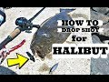HOW TO DROP SHOT for HALIBUT (Flounder) | San Diego
