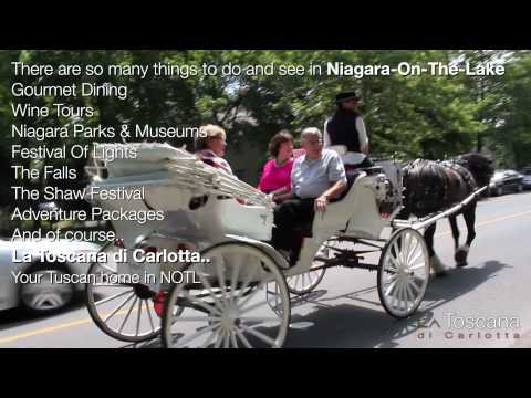 Carriage Ride in Niagara-On-The-Lake