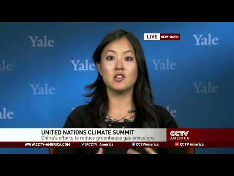 China's efforts to reduce greenhouse gas emissions