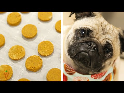 easy-vegan-peanut-butter-pumpkin-dog-treats-with-only-3-ingredients
