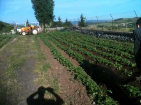 Butter les pommes de terre au treuil et renault n72 youtube - Butter pomme de terre ...