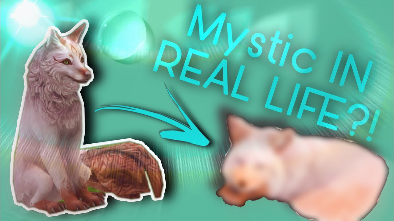 Download I Try To Make A Wildcraft Fox Mystic IN REAL LIFE!?