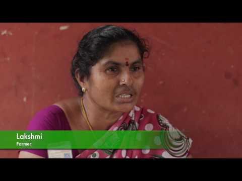 Documentary on Champaran Satyagraha