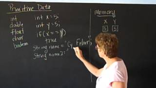 IST297D - Why comparing primitive data and object data is different in Java