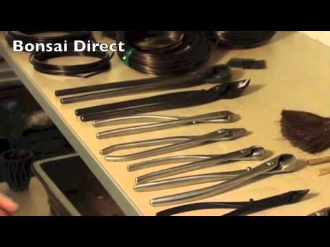 Bonsai Care with Lloyd Noall - Chapter 11 - Bonsai Tools and Pots