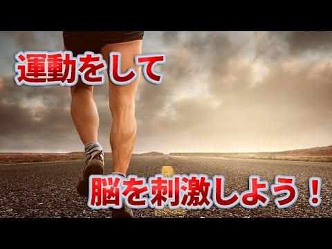 朝の運動と脂肪燃焼や脳との関係