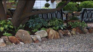 Create a Hosta Garden for the Shade
