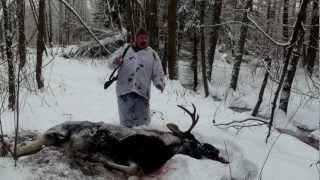 Охота на лося. Зима 2012 год.
