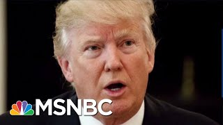 How President Donald Trump Uses Trolling As Political Warfare | The Beat With Ari Melber | MSNBC