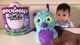 Father & Son toy unboxing Hatchimal for 1 year old Joey