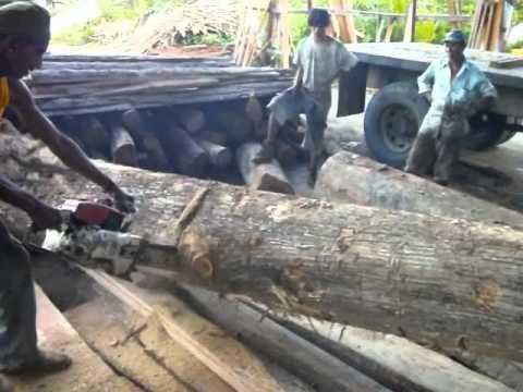 Teak @ Racha's Sawmill & Lumber Yard